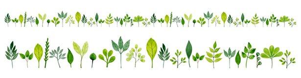 Σχέδιο με τα πράσινα φύλλα σε Watercolor Στοκ εικόνες με δικαίωμα ελεύθερης χρήσης