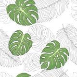 Σχέδιο με τα τροπικούς φύλλα και τους φοίνικες monstera στο άσπρο υπόβαθρο Ζωηρόχρωμη διανυσματική απεικόνιση στο ύφος σκίτσων Στοκ φωτογραφίες με δικαίωμα ελεύθερης χρήσης
