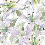 Σχέδιο με τους κρίνους 4 Floral άνευ ραφής υπόβαθρο watercolor με ελεύθερη απεικόνιση δικαιώματος