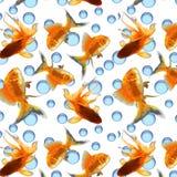 Σχέδιο με το goldfish σε ένα άσπρο υπόβαθρο ελεύθερη απεικόνιση δικαιώματος