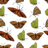 Σχέδιο πολλών φωτεινών πεταλούδων ελεύθερη απεικόνιση δικαιώματος