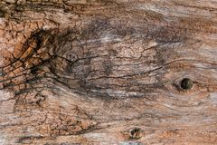 Σχέδιο στην ξύλινη σύσταση στοκ φωτογραφία