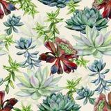 Σχέδιο σχεδίων Watercolor succulents άνευ ραφής στοκ εικόνες