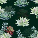 Σχέδιο σχεδίων Watercolor succulents άνευ ραφής στοκ φωτογραφία με δικαίωμα ελεύθερης χρήσης