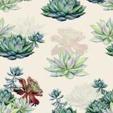 Σχέδιο σχεδίων Watercolor succulents άνευ ραφής στοκ εικόνες με δικαίωμα ελεύθερης χρήσης