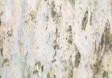 Σχέδιο σύστασης φλοιών δέντρων ξύλινος φλοιός για το υπόβαθρο Στοκ φωτογραφία με δικαίωμα ελεύθερης χρήσης