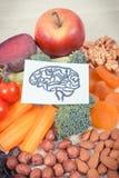 Σχέδιο του εγκεφάλου και των καλύτερων θρεπτικών τροφίμων για την υγεία και την καλή μνήμη, υγιής έννοια κατανάλωσης Στοκ φωτογραφίες με δικαίωμα ελεύθερης χρήσης