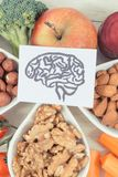 Σχέδιο του εγκεφάλου και των υγιών τροφίμων για τη δύναμη και την καλή μνήμη, θρεπτικά περιέχοντα φυσικά μεταλλεύματα κατανάλωσης Στοκ εικόνα με δικαίωμα ελεύθερης χρήσης