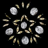 Σχέδιο των ασυνήθιστων φύλλων με μια άκρη που απομονώνεται σε ένα μαύρο υπόβαθρο Σύσταση των ασημένιων φύλλων Ekostyle, φυσικά υλ Στοκ εικόνες με δικαίωμα ελεύθερης χρήσης