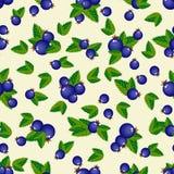 Σχέδιο των μπλε μούρων με τα πράσινα φύλλα απεικόνιση αποθεμάτων