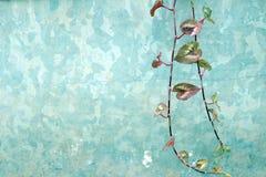 Σχέδιο υποβάθρου κιρκιριών Στοκ φωτογραφία με δικαίωμα ελεύθερης χρήσης