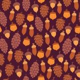 Σχέδιο φθινοπώρου με τους κώνους και τα βελανίδια Στοκ φωτογραφία με δικαίωμα ελεύθερης χρήσης