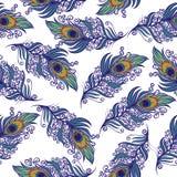 Σχέδιο φτερών Peacock E απεικόνιση αποθεμάτων