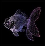 Σχέδιο χρώματος ενός χρυσού llustration ψαριών Σχέδιο ενός ζώου θάλασσας διανυσματική απεικόνιση