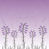 σχέδιο floral Ελεύθερη απεικόνιση δικαιώματος