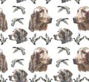 Σχέδιο - lIrish ρυθμιστής και σκυλί Kurzhaar διανυσματική απεικόνιση