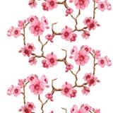 Σχέδιο Seamles με το sakura Απεικόνιση αποθεμάτων