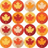 Σχέδιο Seemless με τα φύλλα σφενδάμου φθινοπώρου απεικόνιση αποθεμάτων