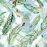 Σχέδιο watercolor Χριστουγέννων των κλάδων έλατου σε ένα υπόβαθρο Συρμένο χέρι illustation Στοκ εικόνες με δικαίωμα ελεύθερης χρήσης