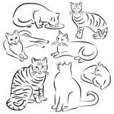 Σχέδια γραμμών γατών καθορισμένα Στοκ εικόνες με δικαίωμα ελεύθερης χρήσης