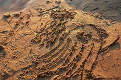 Σχέδια στην υγρή άμμο Στοκ εικόνες με δικαίωμα ελεύθερης χρήσης