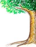 Σχέδιο δέντρων με το κραγιόνι στοκ εικόνες