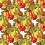 Σχέδιο αχλαδιών Watercolor και φρούτων της Apple Στοκ φωτογραφία με δικαίωμα ελεύθερης χρήσης