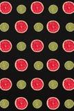 Σχέδιο γκρέιπφρουτ και λεμονιών που απομονώνεται στο μαύρο υπόβαθρο Επίπεδος βάλτε Στοκ Εικόνες