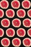 Σχέδιο γκρέιπφρουτ που απομονώνεται στο μαύρο υπόβαθρο Επίπεδος βάλτε Στοκ Φωτογραφίες