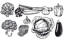 Σχέδιο γραμμών των ανάμεικτων λαχανικών ελεύθερη απεικόνιση δικαιώματος