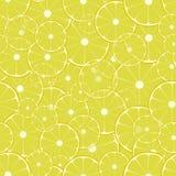 Σχέδιο λεμονιών Στοκ Φωτογραφία