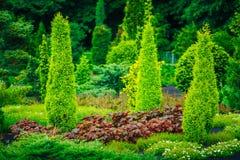 Σχέδιο εξωραϊσμού κήπων Κρεβάτι λουλουδιών, πράσινα δέντρα Στοκ φωτογραφία με δικαίωμα ελεύθερης χρήσης