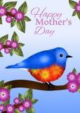 Σχέδιο ευχετήριων καρτών ημέρας της μητέρας Bluebird Στοκ φωτογραφίες με δικαίωμα ελεύθερης χρήσης