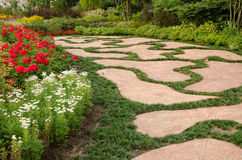 Σχέδιο και λουλούδια διαβάσεων στον κήπο Στοκ Εικόνες