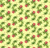 σχέδιο κλάδων λουλουδιών ροδιών Στοκ Εικόνες