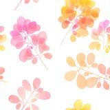 Σχέδιο κλάδων Watercolor Στοκ εικόνα με δικαίωμα ελεύθερης χρήσης