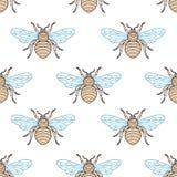 Σχέδιο μελισσών Στοκ Φωτογραφία