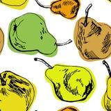 Σχέδιο με συρμένα τα χέρι αχλάδια Διανυσματική απεικόνιση