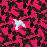 Σχέδιο με τα γραπτά κοράκια Στοκ φωτογραφία με δικαίωμα ελεύθερης χρήσης