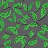 Σχέδιο με τα φύλλα και τις γραμμές Στοκ Εικόνες