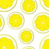 Σχέδιο με τις φέτες του λεμονιού σε ένα άσπρο υπόβαθρο Στοκ Εικόνες