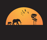 Σχέδιο μπλουζών - ηλιοβασίλεμα της Αφρικής στοκ εικόνες