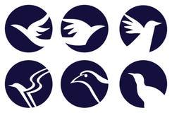 Σχέδιο λογότυπων συμβόλων πουλιών Στοκ φωτογραφία με δικαίωμα ελεύθερης χρήσης