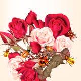 Σχέδιο λουλουδιών με τα τριαντάφυλλα και τα γυναικεία πουλιά Στοκ Φωτογραφία