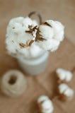 Σχέδιο λουλουδιών με τα χνουδωτές κάρυα βαμβακιού και τη δεσμίδα σχοινιών γιούτας άνω του ρ Στοκ εικόνες με δικαίωμα ελεύθερης χρήσης