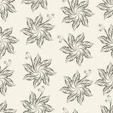 Σχέδιο λουλουδιών τσιγγελακιών επτά-πετάλων, απεικόνιση Στοκ φωτογραφία με δικαίωμα ελεύθερης χρήσης