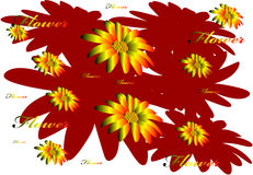 Σχέδιο 8 λουλουδιών Στοκ Εικόνα