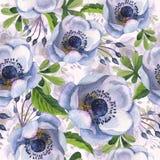 Σχέδιο λουλουδιών anemone Wildflower σε ένα ύφος watercolor που απομονώνεται Στοκ Εικόνες