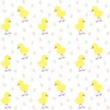 Σχέδιο Πάσχας με το κοτόπουλο και τα αυγά Στοκ φωτογραφία με δικαίωμα ελεύθερης χρήσης