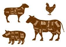 Σχέδιο περικοπών κρέατος κοτόπουλου, χοιρινού κρέατος, βόειου κρέατος και αρνιών ελεύθερη απεικόνιση δικαιώματος